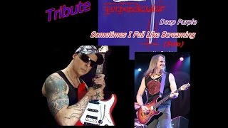 Deep Purple - Sometimes I Fell Like Screaming (solo) *Tribute* Steve Morse - Tiloy D'Alessio