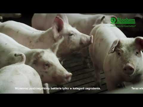 Landmandsfilm Biochem Polish subtitles