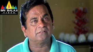 Krishna Movie Brahmanandam Comedy Scene | Ravi Teja, Trisha | Sri Balaji Video