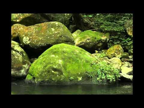 紀淑玲--鵝尾山e眠夢--問田蠳 - YouTube
