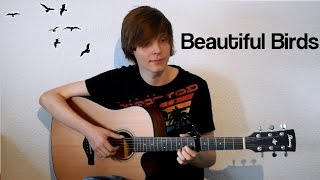 Passenger - Beautiful Birds | Instrumental Guitar Cover