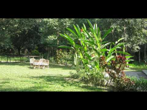 Nepal Morang Biratnagar Kosi Tappu Wildlife Camp Nepal Hotels Travel Ecotourism Travel To Care