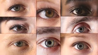 13 Things You Didn't Know About Eyes