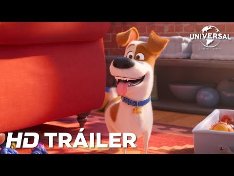 MASCOTAS 2 - Tráiler 1 (Universal Pictures) - HD