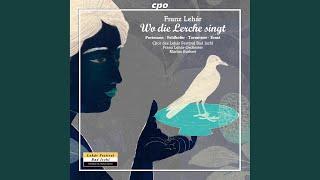 Wo die lerche singt: Act IV: Die Borcsa heult in Kuchel (Pal, Margit, Borcsa)