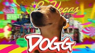 LA LA DOG COMPILATION