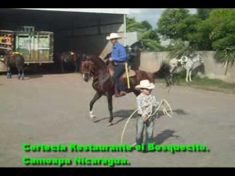 Nelson Taleno Rancho san Cristobal .Camoapa Nicaragua