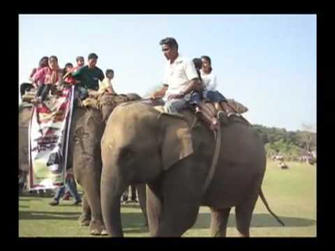 Elephant Soccer – Chitwan, Nepal
