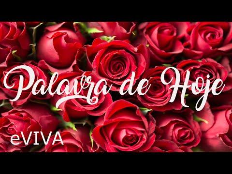 PALAVRA DE HOJE 09 DE JUNHO 2020 eVIVA MENSAGEM MOTIVACIONAL PARA REFLEXÃO ROMANOS 8 SALMO BOM DIA