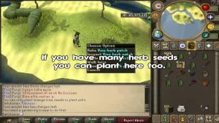 Runescape Juju Farming Potion Guide Youtube