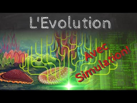 L'évolution, théorie et simulation informatique! - Passe-science #39