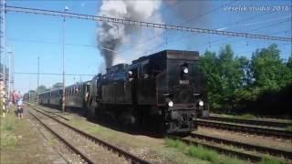 """Příjezd parní lokomotivy """"Ušatá"""" 464.008 do stanice Kostomlaty n/L"""