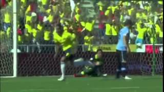 Selección Colombia - Gol (Cali Y El Dandee) 2014
