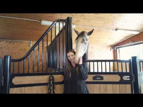 Curved Bridle Rack for Your Horse Barn