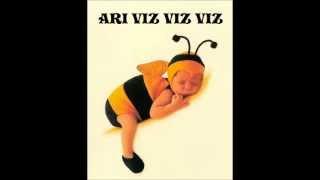 Arı Vız Vız Vız Şarkısı  /  Çocuk Şarkısı (Altyazılı)