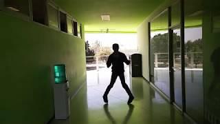 Shuffle dance: Alan Walker, Faded (Paul Gannon Remix) - Parrotillo