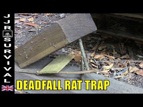 Deadfall Rat Trap