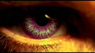 Vital Remains - The Night Has A Thousand Eyes