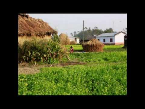 Viaje a NEPAL 2010