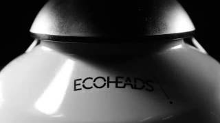 The Ping by ECOHEADS