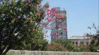"""Lela"" Dulce Pontes + Buenos Aires desde el balcón"