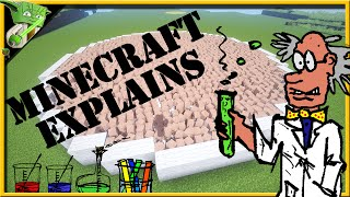 Minecraft Explains: Atoms, Molecules, Elements & Compounds