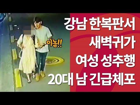 강남 새벽귀가 여성 성추행… 20대 男 긴급체포