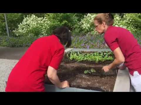Omtyckt rehabilitering i grönskan på Stockholms Sjukhem