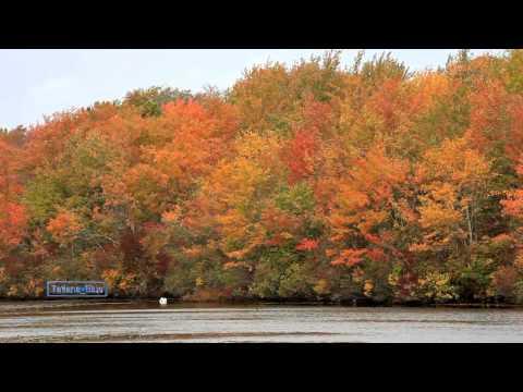 richard-clayderman-les-feuilles-mortes-autumn-leaves-tatiana-blue