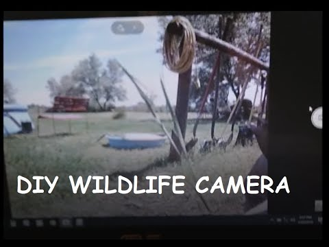DIY Wildlife Monitoring Camera Under $20