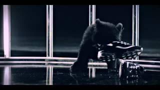 지코X팔로알토X효린_다크팬더_edit ver. (Dark Panda_edit ver.)