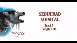 Sequedad Musical - Panda (Letra) HD