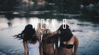 WEEK 6.