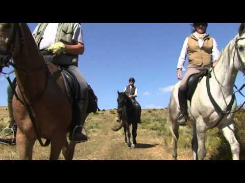 klein Paradys Equestrian Centre