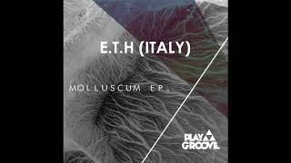E.T.H (Italy) - Pistris (Original Mix)
