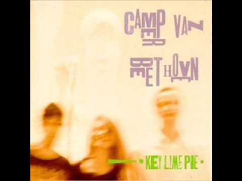 camper-van-beethoven-the-light-from-a-cake-virgil-pink