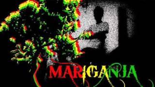 drinking for 11 - mariganja