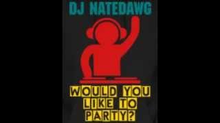 DJ NATEDAWG - Dance Mix 2015