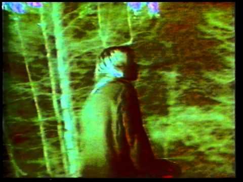 Shadow Of A Doubt de Sonic Youth Letra y Video