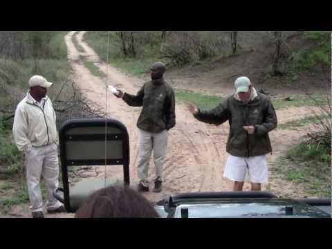 Africa 2011:  Londolozi Visions