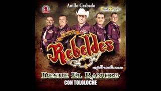 Los Nuevos Rebeldes - Anillo Grabado (Desde El Rancho Con Tololoche 2013)