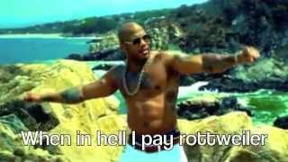 Flo Rida- Whistle Lyrics (w/pictures)