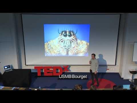 La conjuration des effrayés | Clément Saillet | TEDxUSMBBourgetDuLac