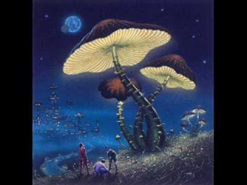 phosphorescent-joe-tex-these-taming-blues-barfbad123
