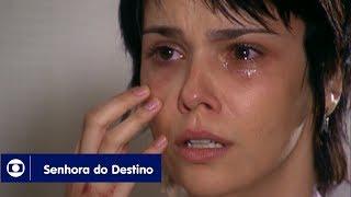 Senhora do Destino: capítulo 169 da novela, terça, 7 de outubro, na Globo