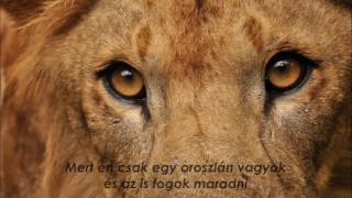 Hollywood Undead - Lion   Magyar felirattal   Hungarian subtitles