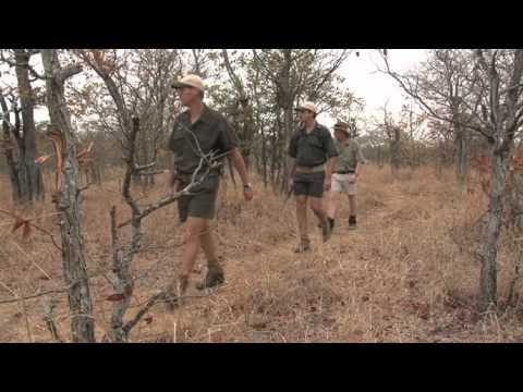 A Guided Bush Walk At Senalala Game Lodge