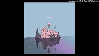 Blayne B & Peezy - Clarity (Prod. Ok2222 & Gould)(Cozy In Bloom)