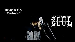 Amnistia - Zoul (Pxndx cover)