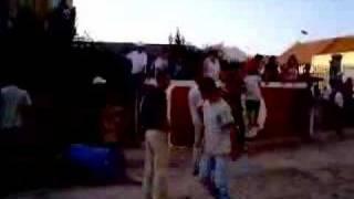 Largada de Toiros no Samouco